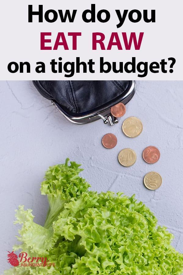 How to Live as a Raw Vegan on a Budget - Berry Abundant Life